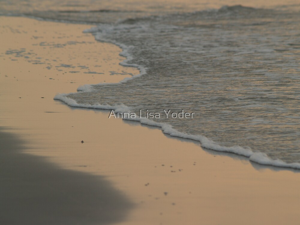Surf in Gold, Hunting Island  by Anna Lisa Yoder