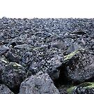 rockpile by Bruce  Dickson