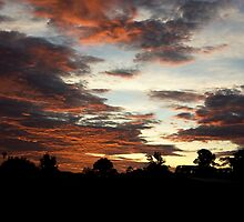 Tropical Twilight - Orange Belly Blanketed Cloudscape  by Kerryn Madsen-Pietsch