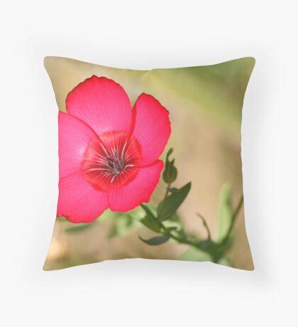 Rasberry Red Throw Pillow