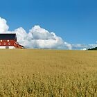 Norwegian Farm Panorama 2  by Stanislav Sokolov