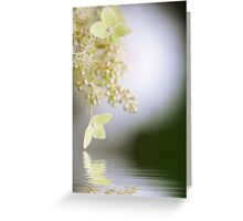 Reflect on Lace Greeting Card