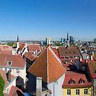 Tallinn Panorama  by Stanislav Sokolov