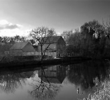 Reflections on a Canal by Alan Ralph