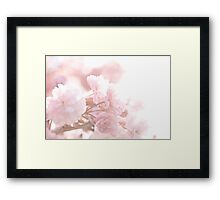 The Lace Framed Print