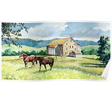 Horse and Barn Landscape Poster