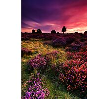 Dunwich Heath 1. Photographic Print
