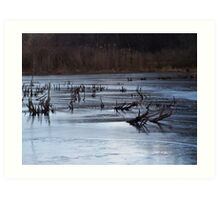 ice n sticks  Art Print