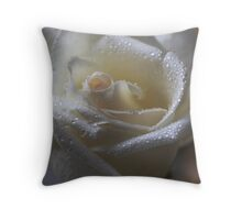 Late Afternoon Shimmer Throw Pillow