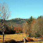 Mount Monadnock - Jaffrey, NH by Len Bomba