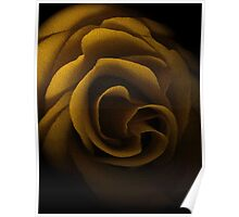 Textured Yellow Rose Poster