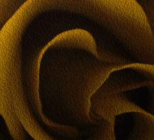 Textured Yellow Rose Sticker