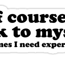 I Talk To Myself Sticker