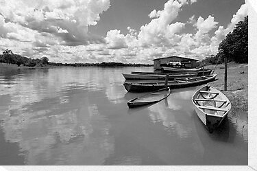 Amazon boats by Carlos Neto