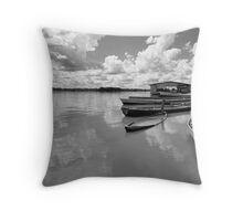 Amazon boats Throw Pillow
