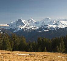 Eiger, Mönch, Jungfrau by peterwey