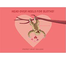 Love Sloths - Head Over Heels Photographic Print