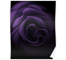 Textured Lilac Rose Poster