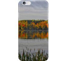Majestic Autumn iPhone Case/Skin