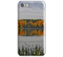 Majestic Autumn iPhone Case/Skin