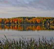 Majestic Autumn by Kathleen   Sartoris