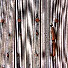Rusty Bolts And Weathered Wood by Fara
