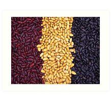 Harvest Flag Art Print