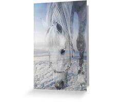 Beauty Up Above   Greeting Card