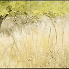 Greenway Grass and Tree by Rene Hales