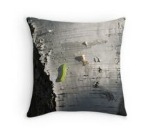 Paper Birch with Inchworm Throw Pillow
