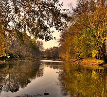 The Olentangy River...Ohio by Kate Adams