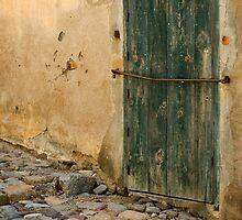 Green Door by Marie Watt