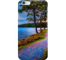 Magical Path iPhone Case/Skin