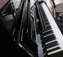 The Ebony and the Ivory - Piano Reflections by BlueMoonRose