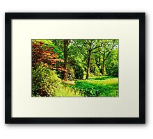 """Spring is in the Air..."" Framed Print"