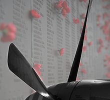 Lest We Forget by lucasmcduck