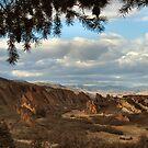 Roxborough Park, Colorado, Red Rocks by Maria Marsico