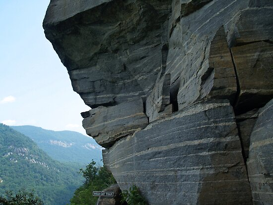Wild Cat Trap Rock Formation, NC by Anna Lisa Yoder