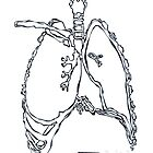 X-ray : Lung by LINEart