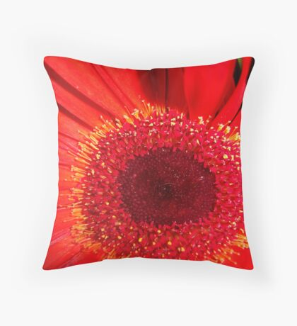 Red Raw Throw Pillow