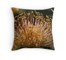 Cobweb Broom Throw Pillow