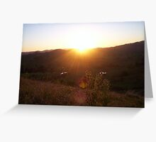 afternoon rays Greeting Card
