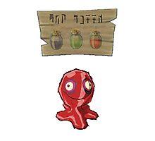 Chu Jelly Juice (Red Chu) Photographic Print