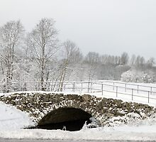 Stone Bridge under Snow  by Stanislav Sokolov