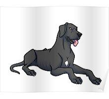 Great Dane - Black - Floppy Ears  Poster
