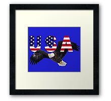 USA Eagle with Stars and Stripes Letters Framed Print