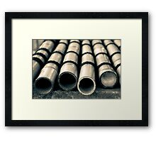 Bamboo with Water Drops Framed Print