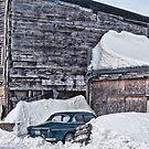 Classic Snowbound by Richard Bean