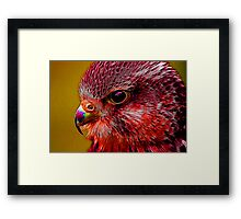 Red Menace Framed Print