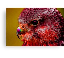 Red Menace Canvas Print